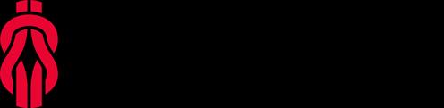 Logo espiroflex negro